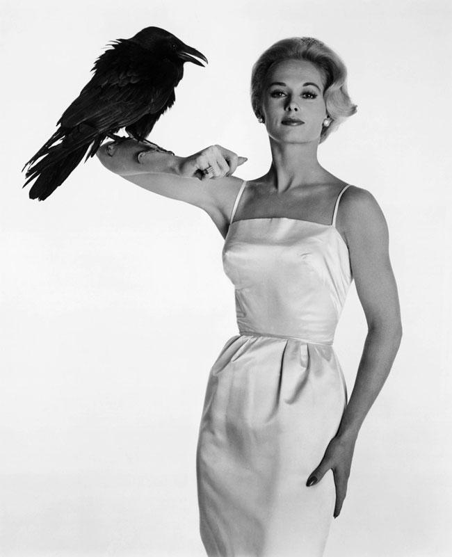 Κοκαλιάρικο μαύρο κορίτσι μεγάλο μαύρο πουλί