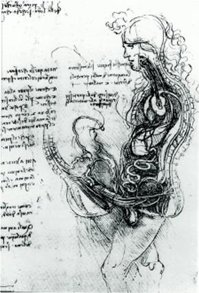 <p>Εργο του Λεονάρντο Ντα Βίντσι με τίτλο Η Συνουσία(c. 1493). «Παρουσιάζω στους άντρες την πηγή του πρώτου, ίσως και του δεύτερου λόγου της ύπαρξης τους», σχολίαζε ο ίδιος από πάνω.
