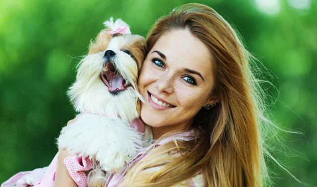 Ο σκύλος είναι χωρίς αμφιβολία μια αγαπημένη παρέα