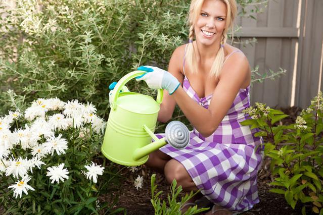 Υπάρχουν τρόποι για να μην πεθάνουν τα φυτά σου το καλοκαίρι