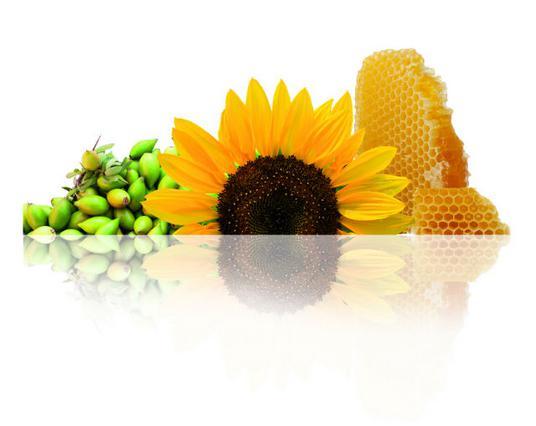 Έλαιο ηλίανθου, έλαιο argan & μέλι: τα συστατικά της επιτυχίας!