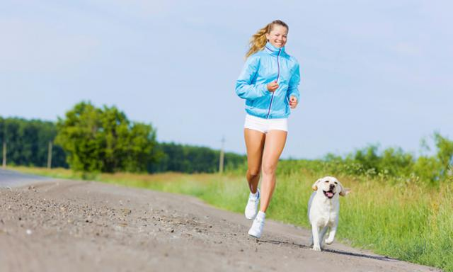 Dog-Run: Τρέξε μαζί με το σκυλάκι σου