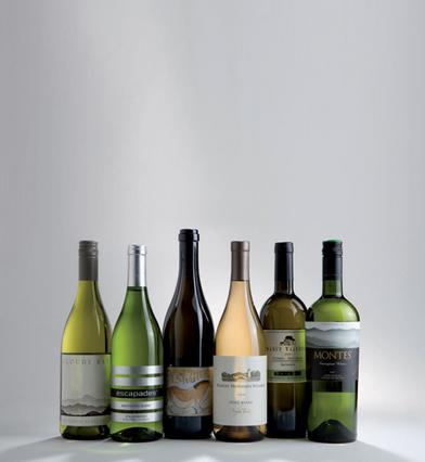 Sauvignon Blanc: Η λευκή ποικιλία