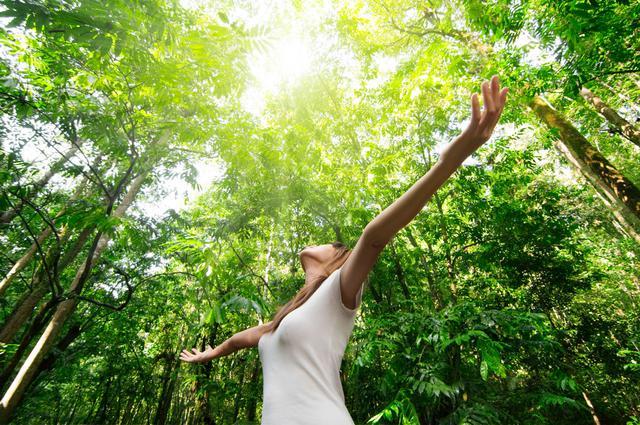 Τεστ: Κάνε μια βόλτα στο δάσος και μάθε τον εαυτό σου!