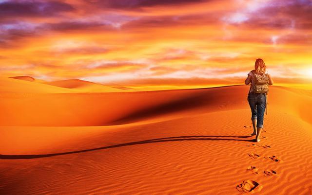 Το τεστ της ερήμου: Ποιό ζωάκι θ΄άφηνες πίσω;