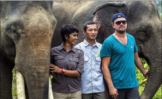 Ο ελέφαντας που... ερωτεύτηκε τον Λεονάρντο ΝτιΚάπριο [photos]