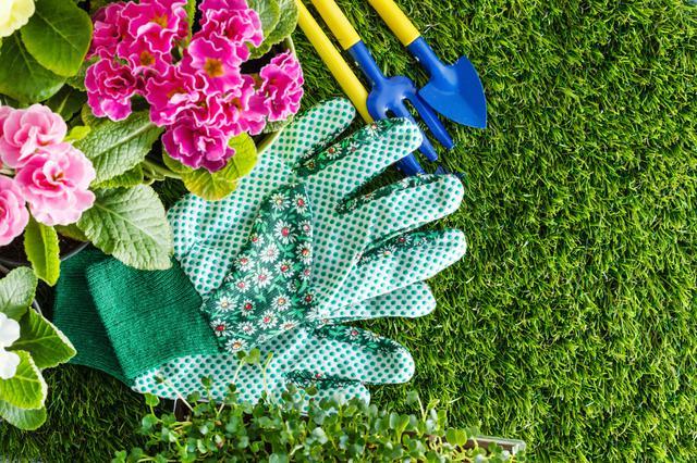 Απλές συμβουλές για έναν όμορφο κήπο