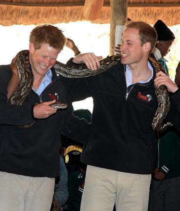 Γουίλιαμ & Χάρι: Φαλακροί και οι δυο πρίγκιπες σε 20 χρόνια [photos]