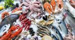 Μάθε τα πάντα για τα θαλασσινά