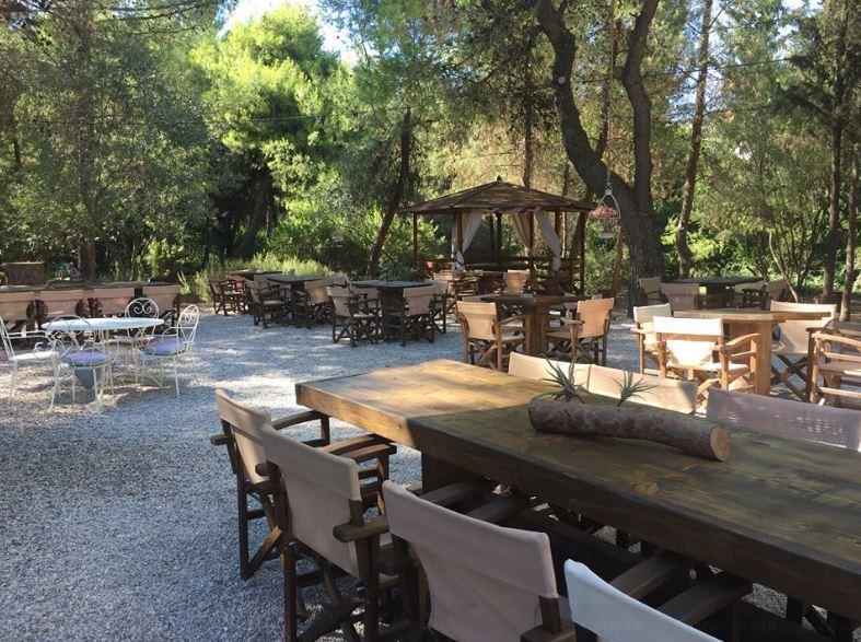 5+1 καφετέριες σε καταπράσινα πάρκα   κήπους (γιατί ακόμη έχει ... 5f26a00ebca