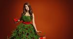 Χριστουγεννιάτικο δέντρο:  Βήμα Βήμα οι οδηγίες για σίγουρη επιτυχία [photos]