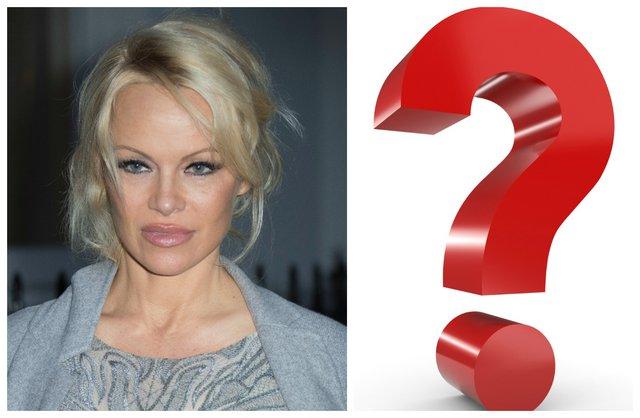 <p>Pamela Anderson (Photo by Joel Ryan/Invision/AP)</p>