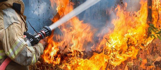 Τι κάνουμε σε περίπτωση πυρκαγιάς: Χρήσιμες οδηγίες για αυτοπροστασία