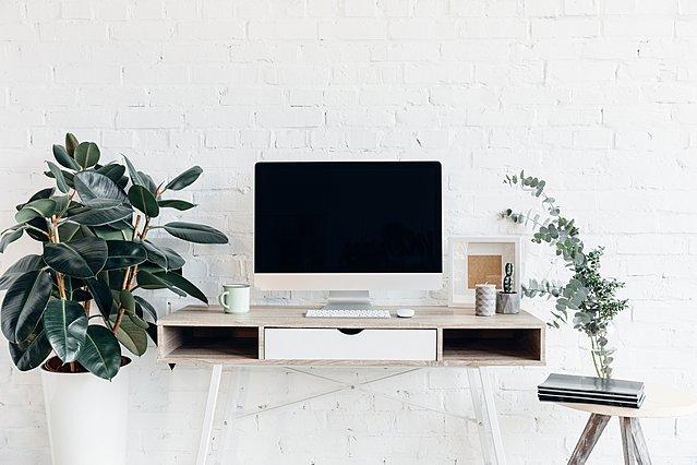 5  εύκολα  φυτά για να ομορφύνεις το γραφείο σου