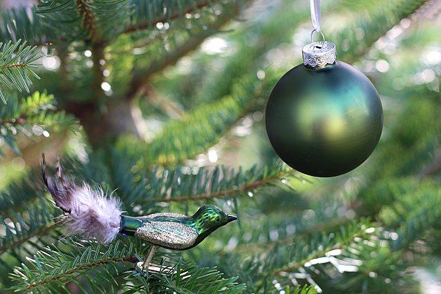 Rainbow Christmas Tree: Το πιο ενδιαφέρον trend των φετινών Χριστουγέννων