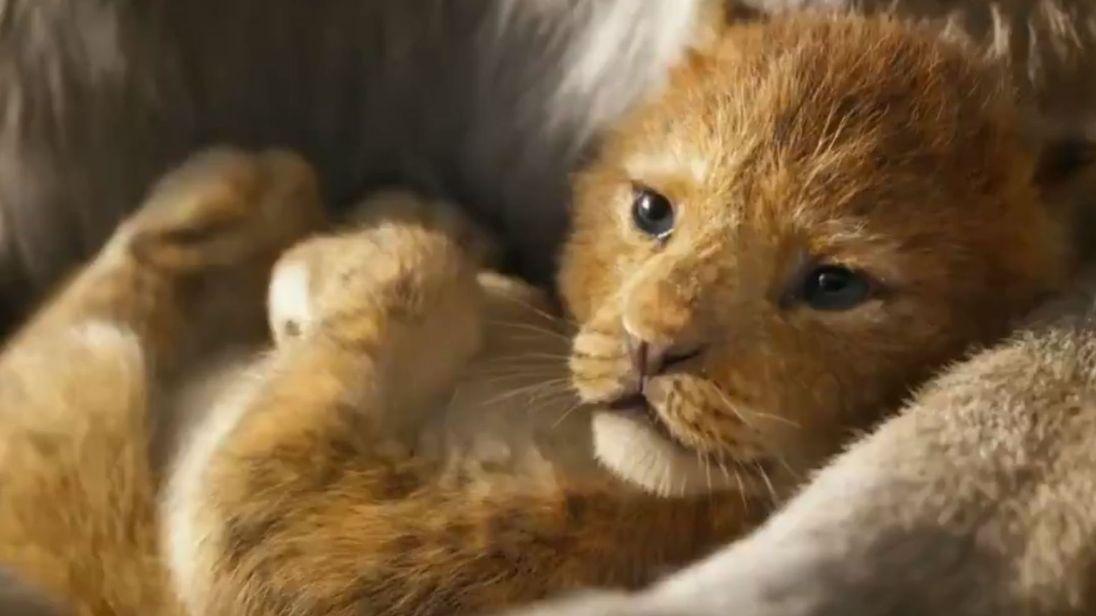 Λιοντάρι ταινία πορνό βασιλιάς
