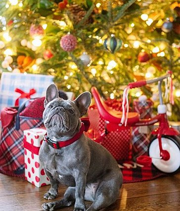 Αυτοί είναι οι καλύτεροι χριστουγεννιάτικοι στολισμοί των celebrities που είδαμε φέτος