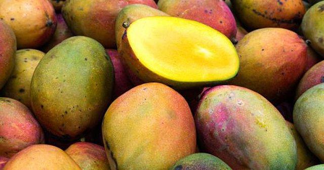 Μάνγκο: Ο βασιλιάς των φρούτων με τις αντικαρκινικές ιδιότητες