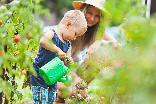 Αυτά είναι τα πιο ιδανικά φυτά για να αγαπήσουν τα παιδιά σου την κηπουρική