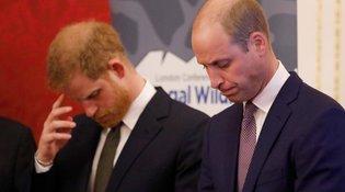 Πρίγκιπας William: Όλη μου τη ζωή «αγκάλιαζα» τον Harry, δεν μπορώ να το κάνω πια