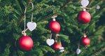 3 συμβουλές για να κρατήσεις φρέσκο το φυσικό χριστουγεννιάτικο δέντρο σου σε όλες τις γιορτές