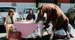 Γιώργος Λάνθιμος: Η σουρεαλιστική καμπάνια που υπογράφει για τον οίκο Gucci έχει να κάνει με τα άλογα [photos]