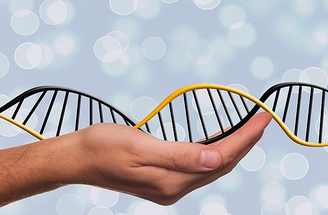 Επιγενετική:  Κρατά το «κλειδί» της πρόληψης και της θεραπείας ασθενειών