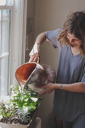 4 αρωματικά φυτά για την κουζίνα που μπορείς να καλλιεργήσεις σπίτι σου