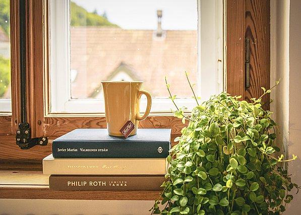 Γιατί είναι πολύ καλό για την υγεία σου να έχεις στο σπίτι φυτά εσωτερικού χώρου