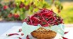 Καυτερές πιπεριές: Αυτά είναι τα θαυματουργά οφέλη για την υγεία σου