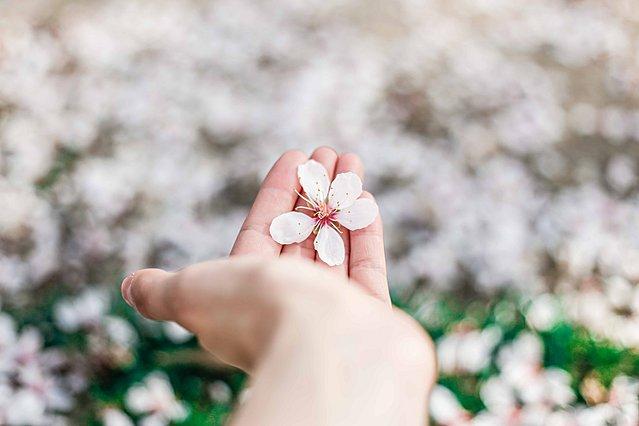 Απαλό δέρμα: Πρόσθεσε αυτό το συστατικό στην κρέμα των χεριών σου και θα εκπλαγείς