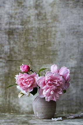 Τα tips για να διατηρήσεις τα λουλούδια στο βάζο