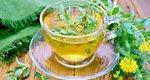 Γνωρίστε τα Προσαρμογόνα: τα νέα βότανα που καταπολεμούν το stress